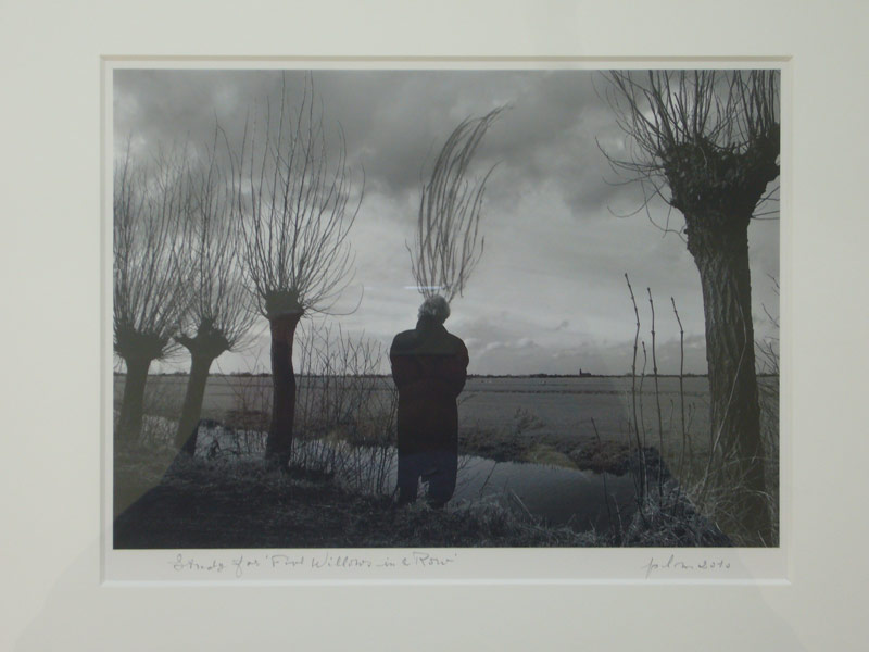 Pieter Laurens Mol, Study for 'Five Willows in Row', 2010, graphite sur inkjet B/W photo, 72 x 92,4 cm, courtesy Farideh Cadot & the artist
