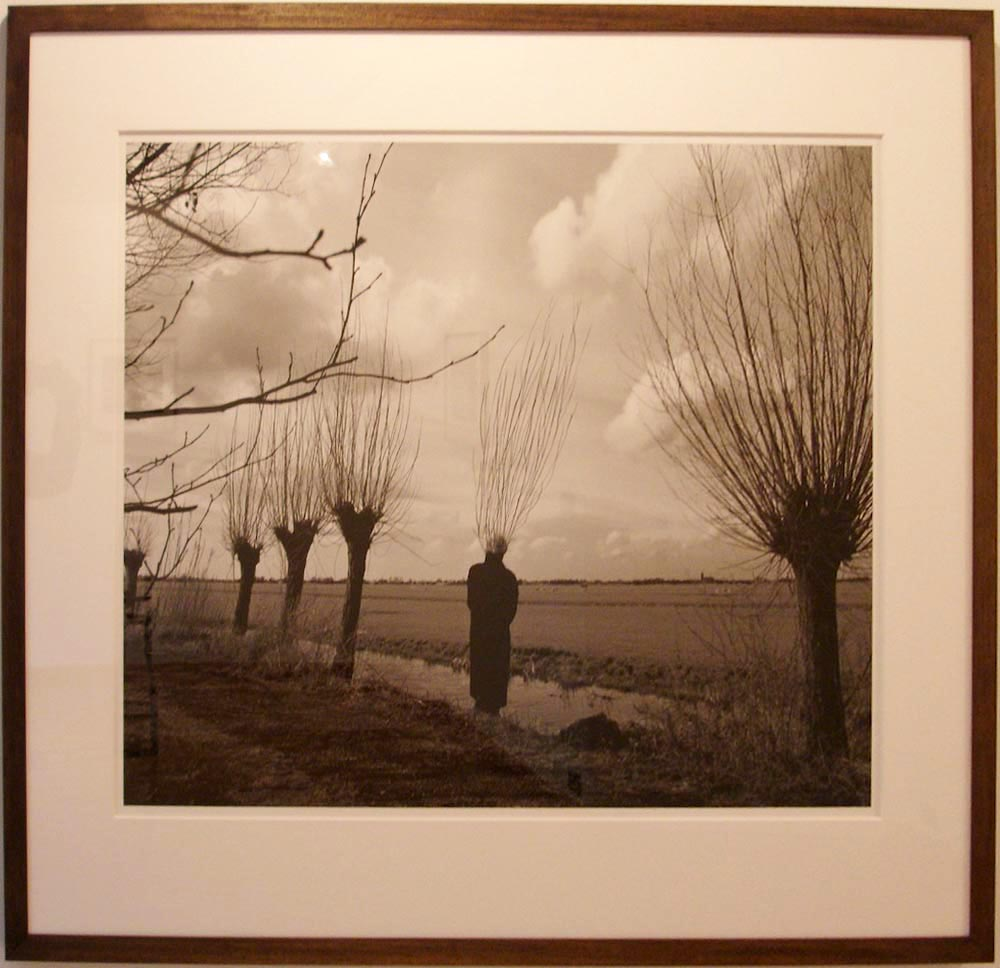 Pieter Laurens Mol, Willowman, 2010, 72 x 92,4 cm, courtesy Farideh Cadot & the artist
